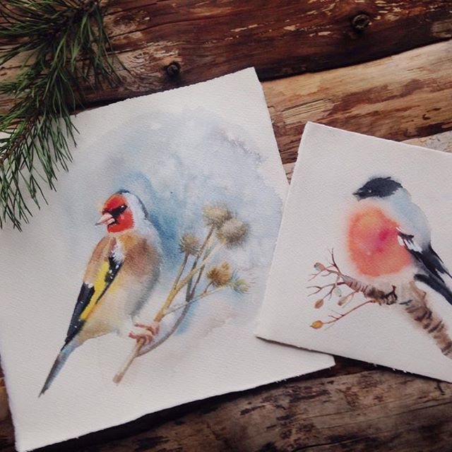 #птицы, #watercolor, #цветы, #акварель, #birds, #painting, #щегол, #снегирь, #bullfinch