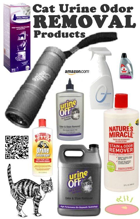 Cat Urine Odor Removal Products - The best Cat Urine Odor Removal Products are available at Amazon.com, and you can see what is available by clicking on the image below