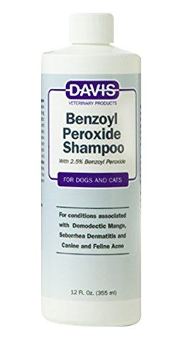 Top 5: Best Medicated Dog Shampoo for Skin and Itching Problems