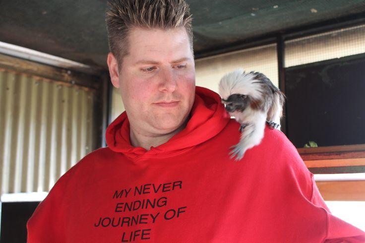 Animal Encounter - Cotton Top Tamarin Monkeys