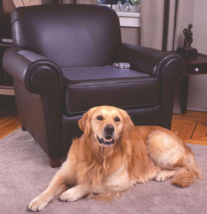Scat-Mat Keeps Pet Off Furniture