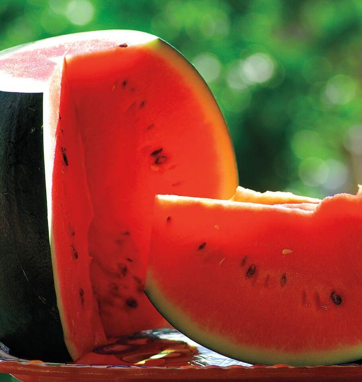 non gmo, open pollinated, heirloom  Sugar Baby Organic watermelon seeds from westcoastseeds