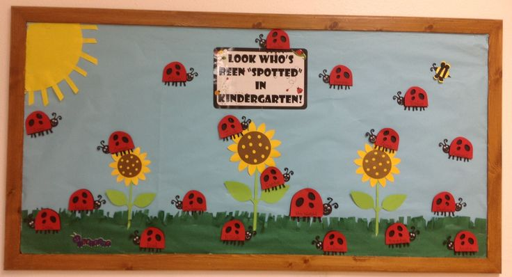 """Look Who's Been 'Spotted' in Kindergarten!"" Back to school bulletin board. I have a ladybug for every student with their name on it. I used my Cricut to create the ladybugs, sunflowers, bumblebee, and caterpillar.  This was a lot of fun to design!"