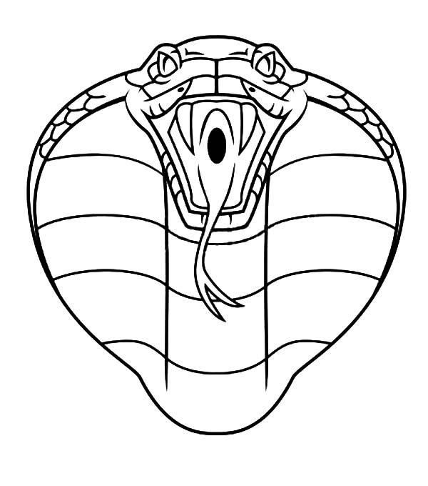 King Cobra Outline Coloring Pages | Kids Play Color ...