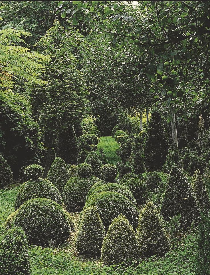 17 Best 1000 images about Gardens of Grandeur on Pinterest Gardens