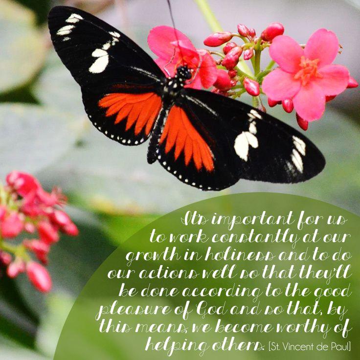 [St. Vincent de Paul]   quotes   butterfly   spring ...