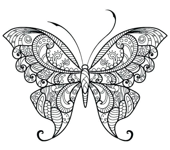 Pictures To Colour Google Search Butterfly Coloring Page