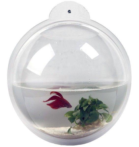 1000 id es sur le th me aquarium mural sur pinterest for Aquarium decoratif mural