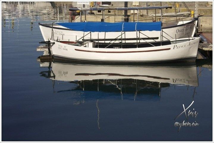 Streamzoo photo - Reflecting