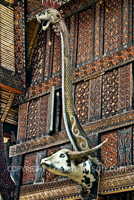 Indonesia, Sulawesi, Tana Toraja, Marante village, traditional Torajan house known as tongkonan with intricate hand-carved and painted wooden wall panels and a dragon figure above a water buffalo head replica. Water buffaloes are sacrificed at funeral ceremonies.