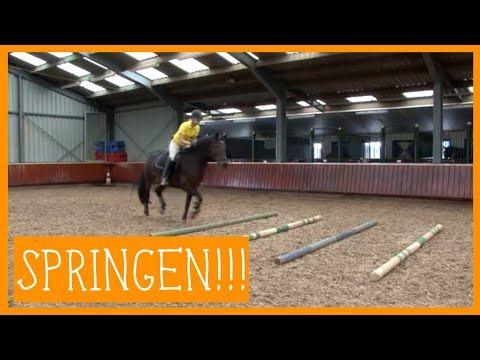 Basis springen | PaardenpraatTV - YouTube