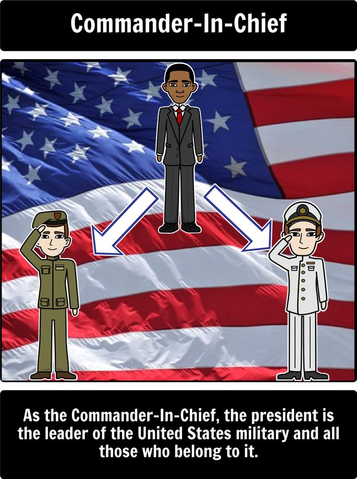 Executive Branch - Roles of the President: Use a spider map to portray the different roles of the President! Here is a close up of Commander-In-Chief.
