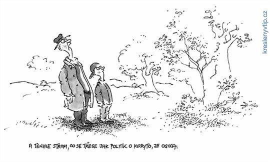 Vladimír Renčín - A tenhle strom, co se třese jak politik o koryto, je osika