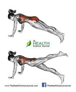 cool All About Abs – 66 Exercises in Pictures! Bodybuilding, Calisthenics & Yoga (Part 1) - Page 3 of 4 - The Health Science Journal
