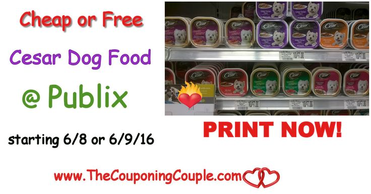 Cheap or Free Cesar Dog Food @ Publix starting 6/8 or 6/9. Print coupons NOW to hold so you don't miss this coming deal! Great Stock up Price!  Click the link below to get all of the details ► http://www.thecouponingcouple.com/cheap-or-free-cesar-dog-food-publix/ #Coupons #Couponing #CouponCommunity  Visit us at http://www.thecouponingcouple.com for more great posts!