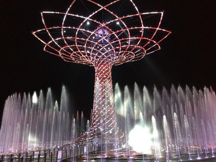 Tree of Life EXPO Milano 2015