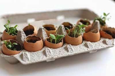Diy reciclaje con cartones de huevos | Aprender manualidades es facilisimo.com