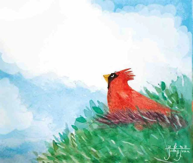"juanbjuan children illustration: ""Red bird chirps""  cover illustration"