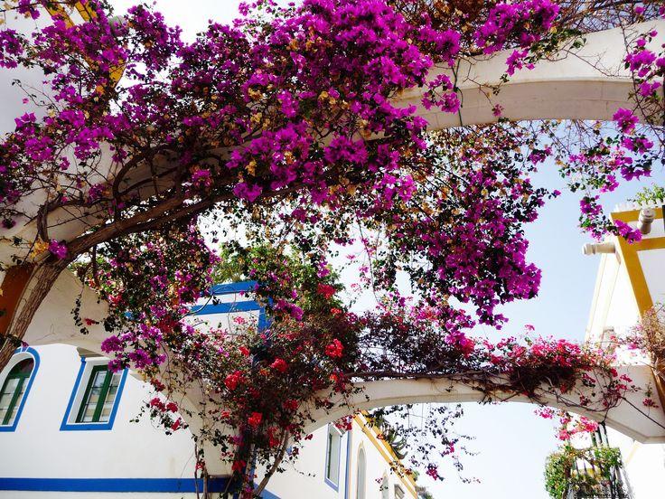 Retour sur Grande Canarie pour visiter l'un de ses plus jolis villages : Puerto de Mogan au sud-ouest de l'île....