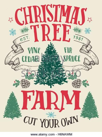 Best Christmas Tree Farm - creditrestore.us