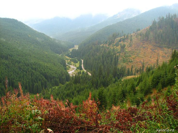 an overview of the mountain to Bukovina