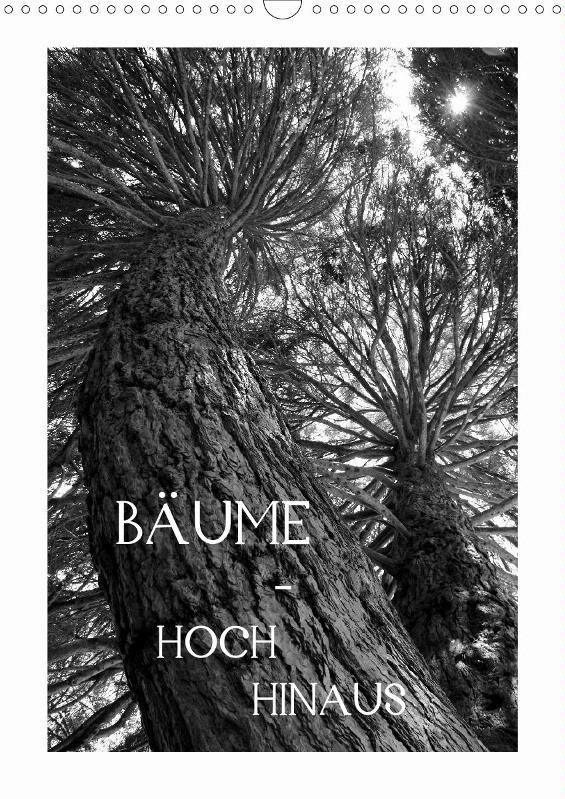 Bäume - hoch hinaus - CALVENDO  Zu beziehen über www.amazon.de, www.hugendubel.de, www.weltbild.de, www.thalia.de, www.buch24.de, www.kalenderhaus.de, www.buchhandel.de, www.ebay.de, www.bookbutler.de oder unter www.calvendo.de