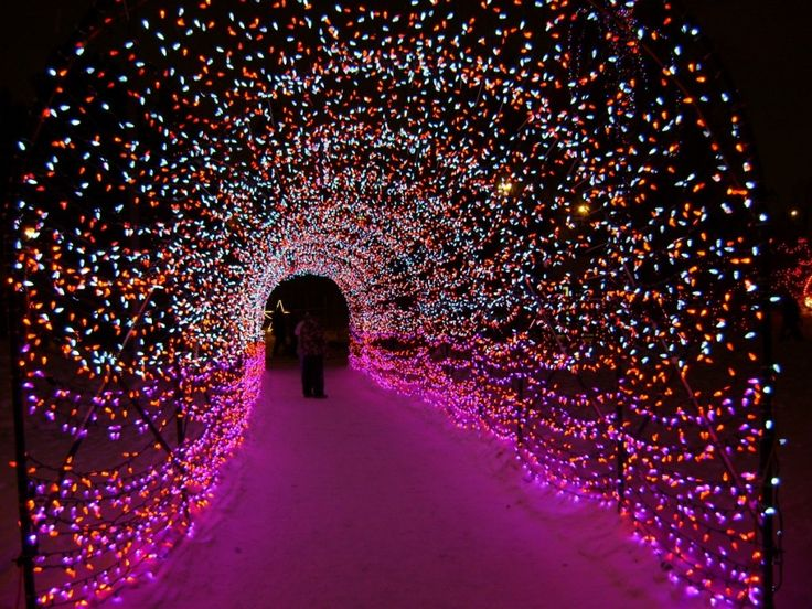 Looking for things to do this weekend, or during the week? Come check out Calgary Zoolights.