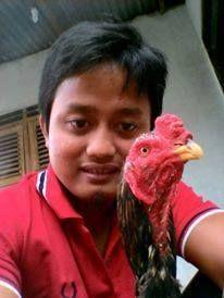 Foto kiriman M. Fachriansyah Putra  Ini dia siRambo jago kesayanganku, paling jago diajak selfie.. cizzz...!!! bakal menang ni kita rambo..!!! #AnimalLoversEMCO