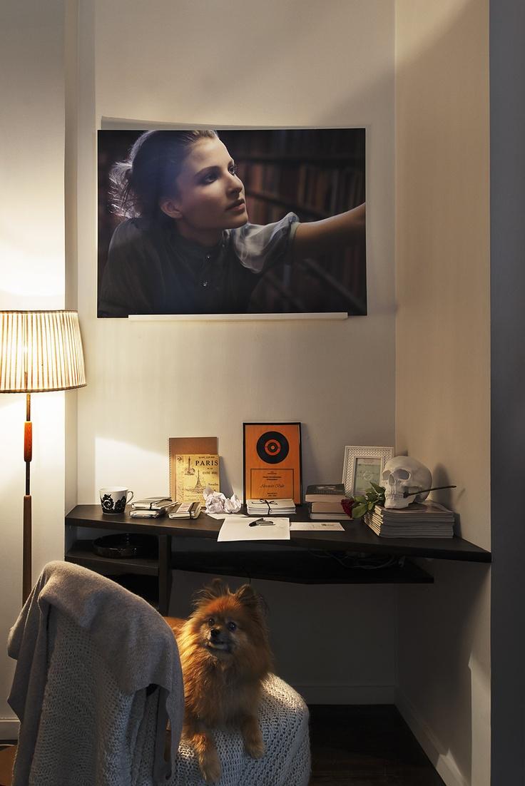 Dog & Hund Fantastic Frank