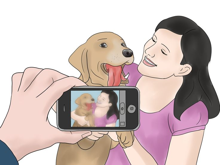 How to Adopt a Dog from a Humane Society or Animal Shelter -- via wikiHow.com