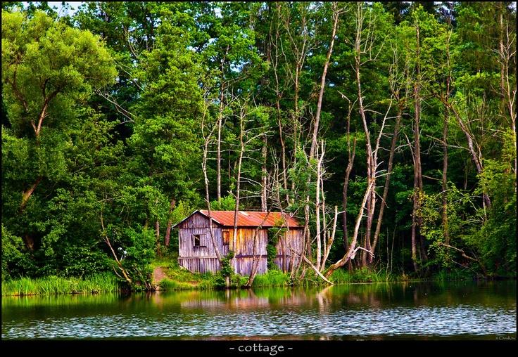 - cottage -