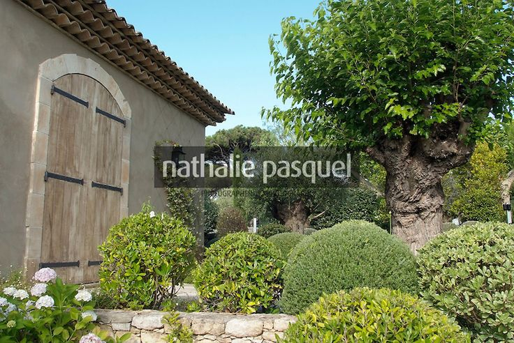 Jardin de facade. Massif avec arbuste persistant ...