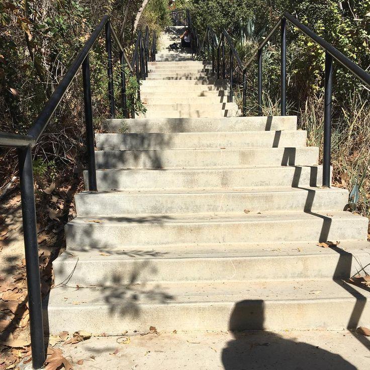 #stairs #vistahermosa #park #skyline #downtown #downtownlosangeles #downtownla #dtla #losangeles #la #nature