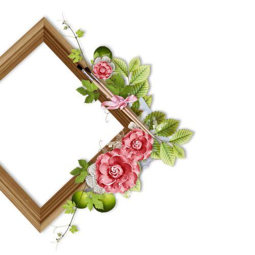 Рамка цветочная (19).png