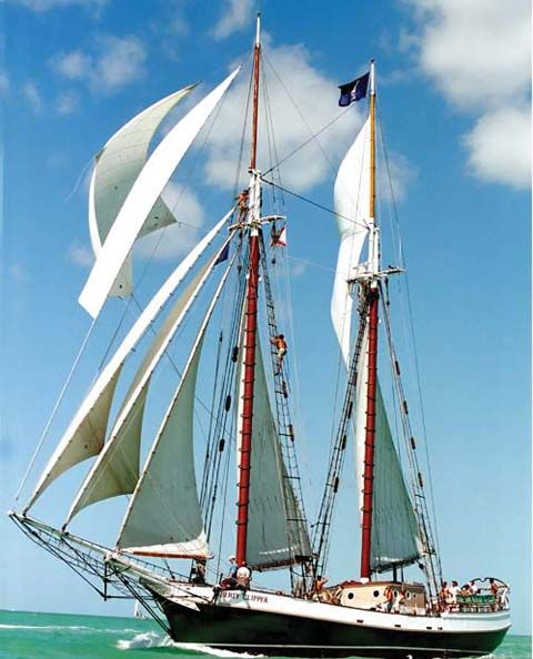 Windjammer Cruises.  I would not recommend unless you like to rough it!  Been there, done that, never again!