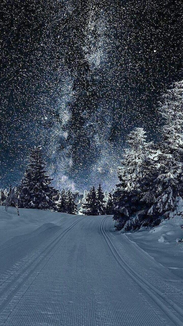 Winter Night Winter Scenery Winter Wallpaper Landscape Wallpaper