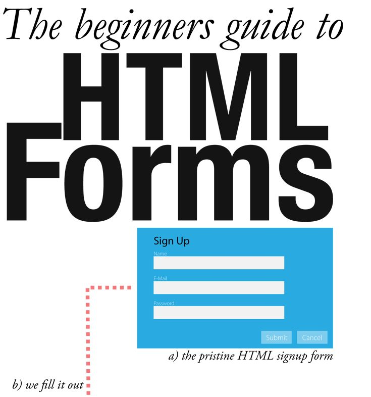 how to learn web design and development