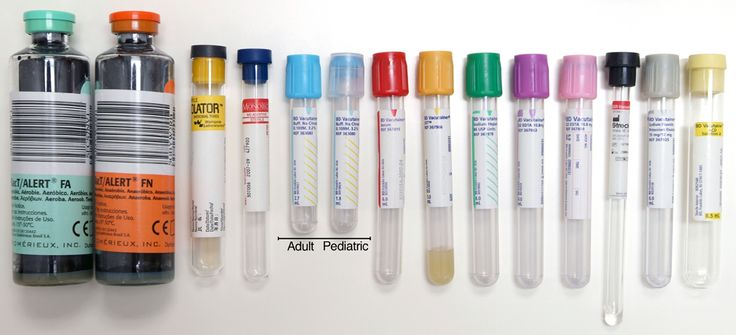 Blood Collection Tubes Collection Order (cultures, then holiday colors-blue, red & green, purple, gray)