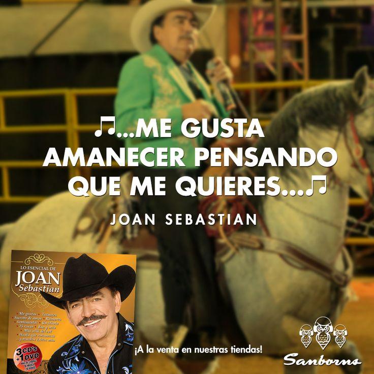 Lo esencial de Joan Sebastian