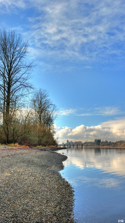 Beautiful shorelines, Derby Reach, Langley BC