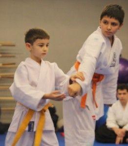 Çocuk Aikidosu ise çocuk yaşta yapılan Aikido diye adlandırmak daha doğru olacaktır. Aikido, Morihei Ueshiba adlı bir Japon savaş sanatları ustası tarafınd