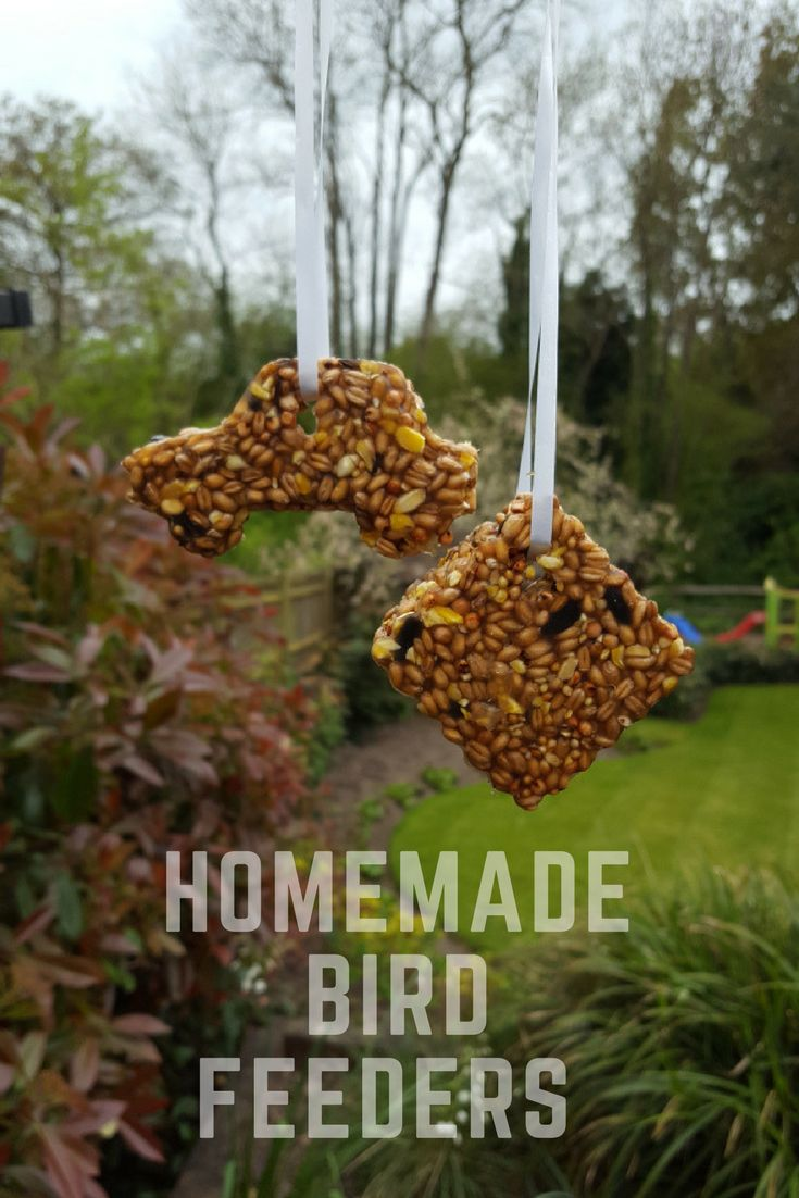 Come and take a look at our homemade bird feeders. Great activity for children to learn about wildlife