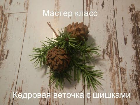 """""""Кедровая веточка с шишками"""" - YouTube"""