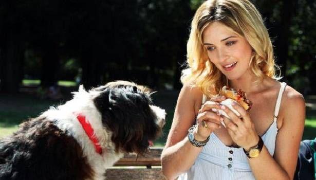 A kutyadada (Un cane per due) - Online Film - színes, magyarul beszélő, olasz családi vígjáték, 93 perc, 2010