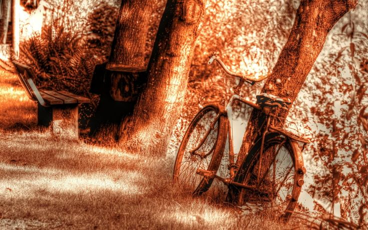 bicycle old scene wallpaper