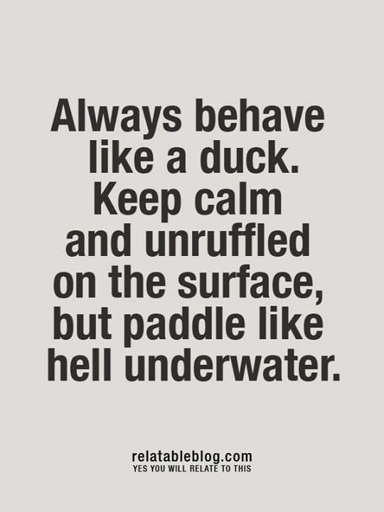 """Keep calm and unruffled on the surface, but paddle like hell underwater"" The best of us keep a calm demeanor even in the midst of chaos."