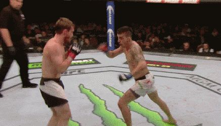 Thomas Almeida hits a perfect flying knee http://ift.tt/2bFAsIh Love #sport follow #sports on @cutephonecases
