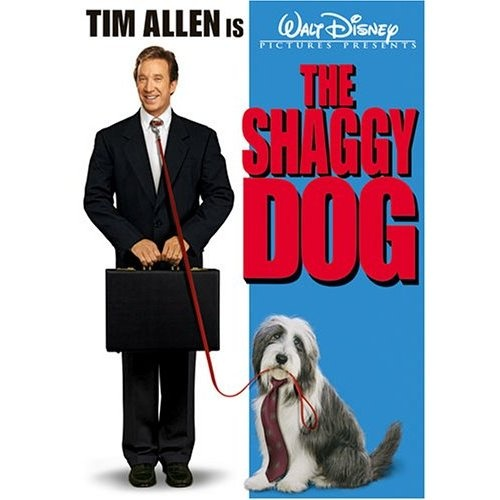 The Shaggy Dog (2006). Starring: Tim Allen, Danny Glover, Jane Curtin, Craig Kilborn, Robert Downey Jr., Kristin Davis, Zena Grey, Spencer Breslin, Joshua Leonard, Shawn Pyfrom and Bess Wohl