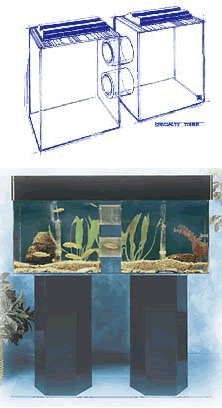 42 best images about fish on pinterest acrylic tube 55 for 55 gallon corner fish tank