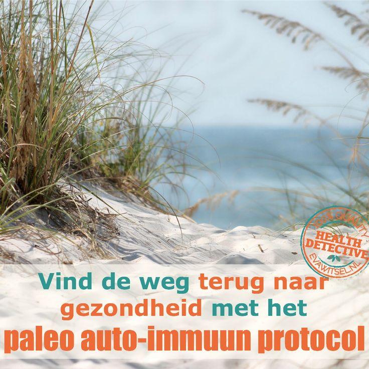Chronisch ziek of een auto-immuunziekte? Het paleo auto-immuun protocol helpt! | www.evawitsel.nl